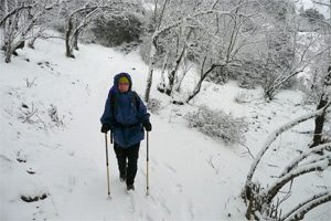 Auf nach Khumjung im Schnee