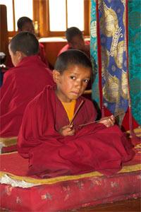 Junger Mönch im Kloster Thiksey