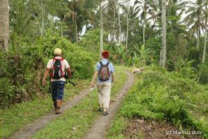 Bali Wanderung