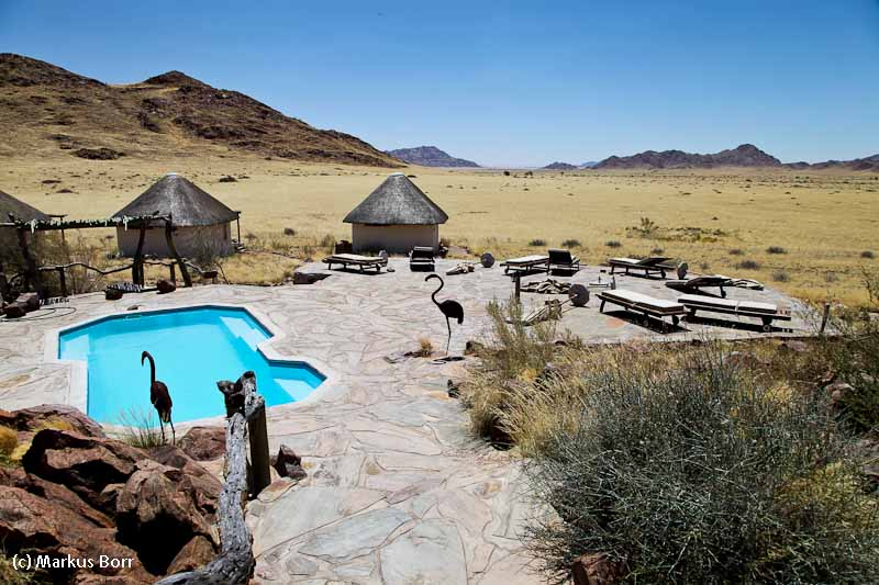 Desert Homestead Pool mit Aussicht